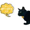 【単身者・猫飼育初心者にもオススメ!】ルンナくん サムネイル2