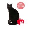 より目がチャームポイント!りんご猫のジジくん サムネイル4