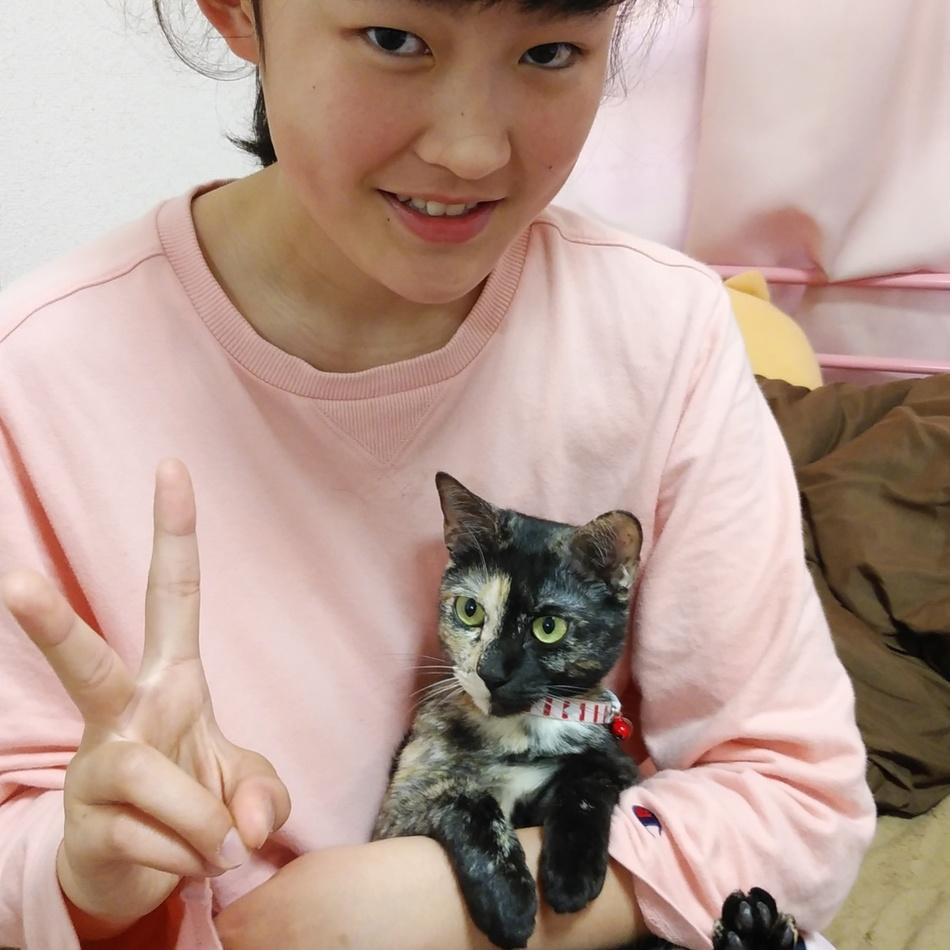 花蘭(ぷあら)のカバー写真
