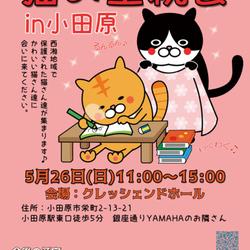 【おだわら】保護猫の里親会