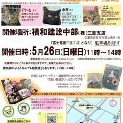 保護猫譲渡会in積和建設中部