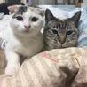 平成最期の大晦日産まれ!!スコmix◆女の子 サムネイル4