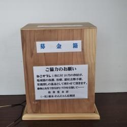 栃木・わんにゃん応援団   譲渡会 サムネイル3