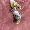 可愛いセキセイの雛二羽 サムネイル3