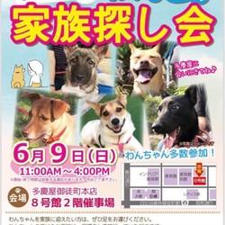 はーとinはーとZR 6月譲渡会 多慶屋 サムネイル1