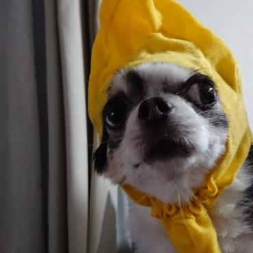あんバナナ