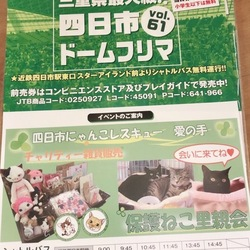 猫の譲渡会+フリマin四日市ドーム