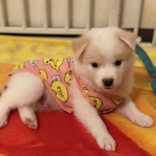 セナ kun ⭐️ 2ヶ月