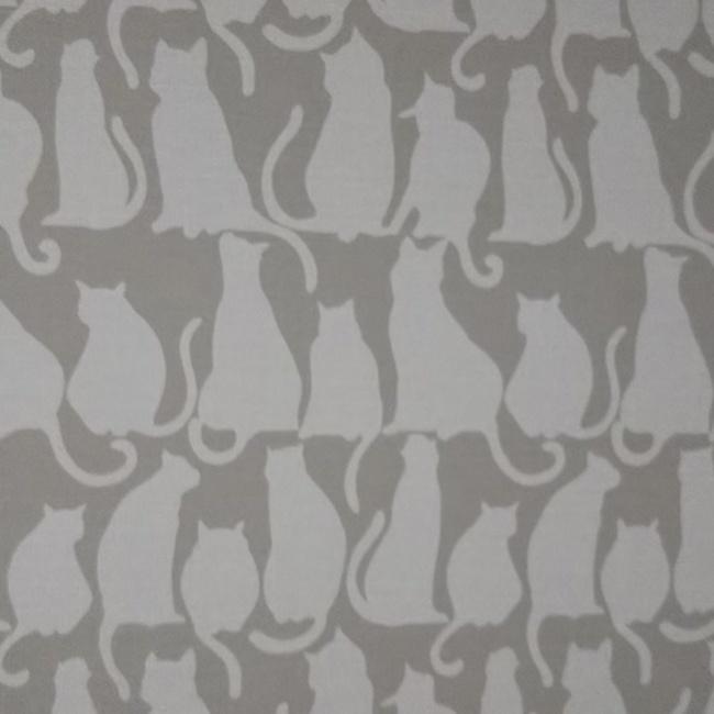 茜@毎日猫のカバー写真