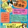 猫の譲渡会in橋本市♡はしもとさくら猫の会 和歌にゃんず