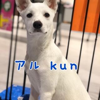 アル kun ⭐︎ 5ヶ月