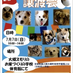 保護犬・保護猫の譲渡会!