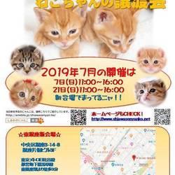 ♪しあわせにゃんこ♪猫ちゃんの譲渡会IN東銀座