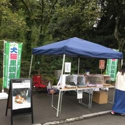 7月の里親会(高尾霊園)