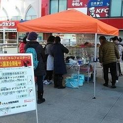 保護猫譲渡会@JR柏駅東口Wデッキ サムネイル2