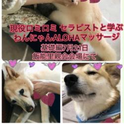 チャリティー★★★★犬猫マッサージ教室