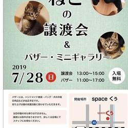 猫の譲渡会&フリマ&写真展
