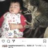 子供が小児喘息なのに子供が大好きな猫 サムネイル2