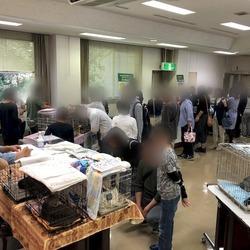 名古屋市動物愛護センター 猫の譲渡会 サムネイル2