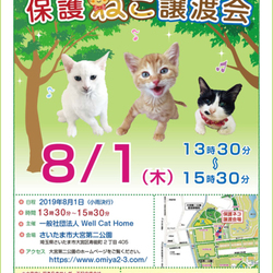 さいたま市 大宮区第二公園「保護ネコ譲渡会」開催 13時30分~