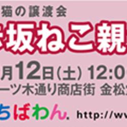 【台風のため中止します】ちばわん赤坂ねこ親会 サムネイル1
