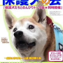GO!保護犬GO☆保護犬の会(冷房完備)@静岡小山(富士霊園・富士スピードウェイ近く) サムネイル1