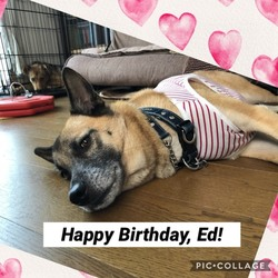 Happy   Birthday,   Ed!