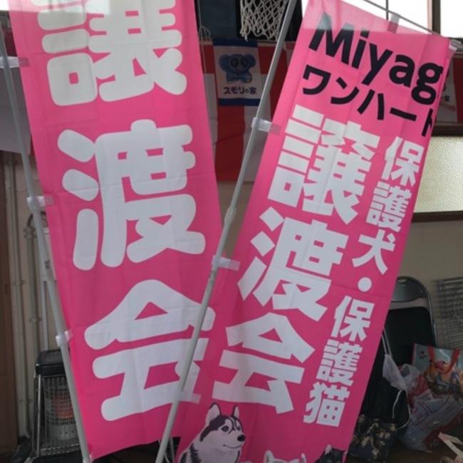 Miyagiワンハートのカバー写真