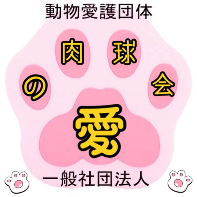 非営利一般社団法人動物愛護団体『愛の肉球会』のカバー写真