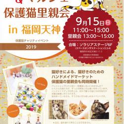 ふくねこマルシェ&保護猫譲渡会 in 福岡天神