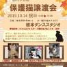 猫カフェ風保護猫譲渡会in 根本ダンススタジオ