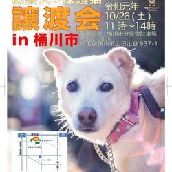 保護犬☆保護猫 譲渡会IN 樋川市 サムネイル1