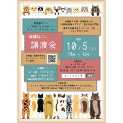 10.5藤井寺保護猫サロン保護猫譲渡会