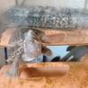 世界最小!水棲 亀さん*ミシシッピニオイガメ サムネイル4