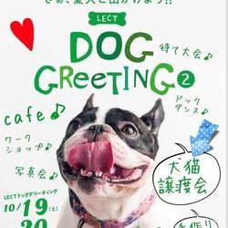 LECT DOG GREETING 2