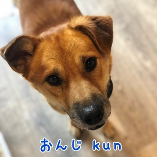 おんじ kun  ⭐️人大好き甘えん坊❤️
