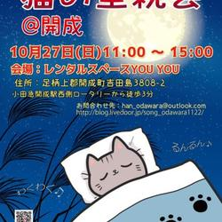 保護猫の里親会 in 開成