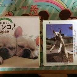 日めくりカレンダーに掲載されました!!