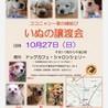 10月27日犬の譲渡会開催