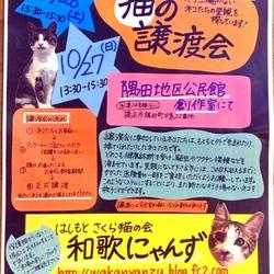 猫の譲渡会in橋本市♡はしもとさくら猫の会