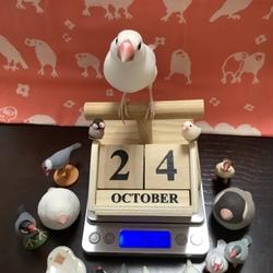 祝・文鳥の日