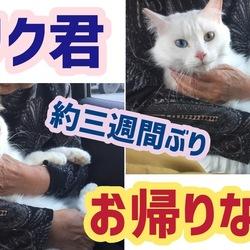【4期生♡リク】10/23宮城から帰宅