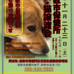 倉敷市保健所 収容犬猫譲渡会・見学会 サムネイル1