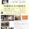 保護猫&犬の譲渡会(手作り商品販売)