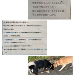 モヤモヤ解決\( ´˘`)/