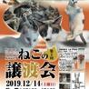 12/14猫の譲渡会@千里山を開催します