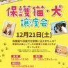 保護猫・犬 譲渡会 in ララガーデン春日部