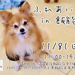 ハッピー犬屋敷2020年第10回ふれあい会in飯能