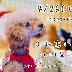 ハッピー犬屋敷第4回ふれあい会in小豆沢