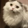 【募集一時停止中】トコトコ君 サムネイル4